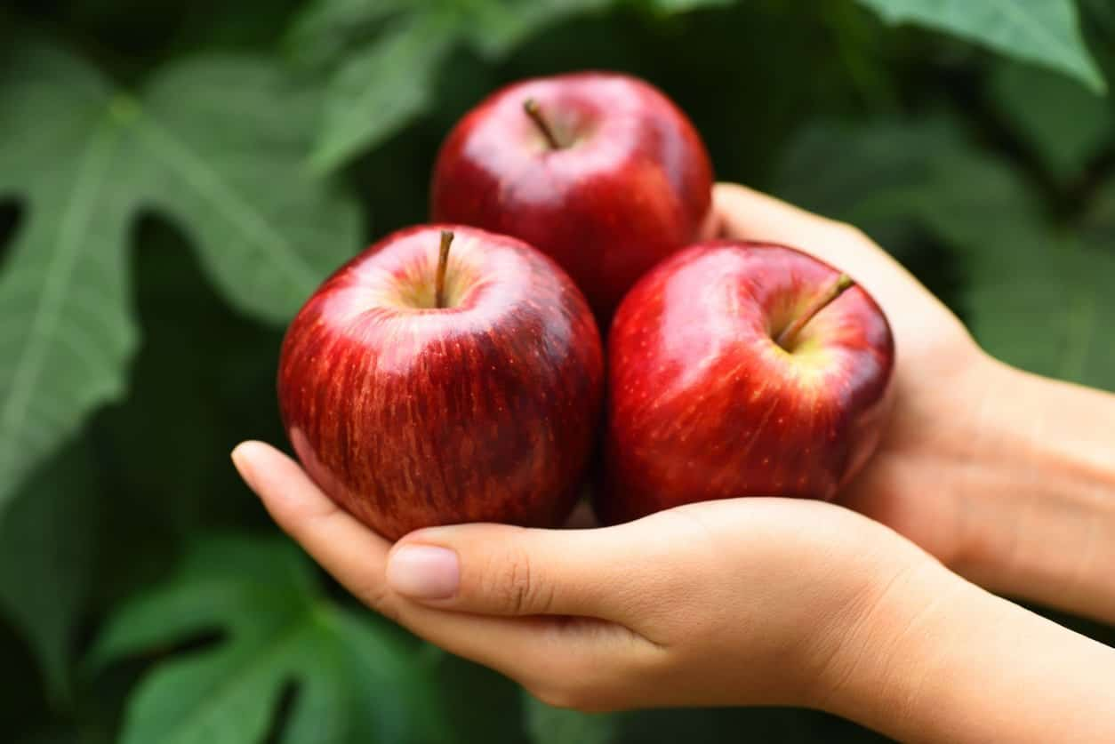 Crimson Crisp Apple