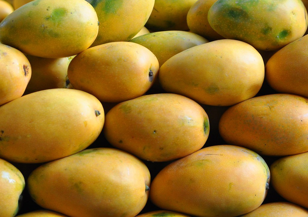 Benishan Mango