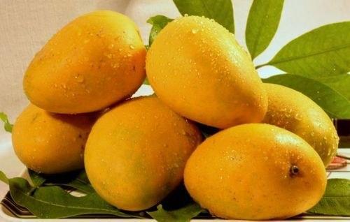 Imam Pasand Mango