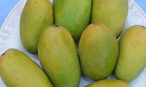 Philihara Mango