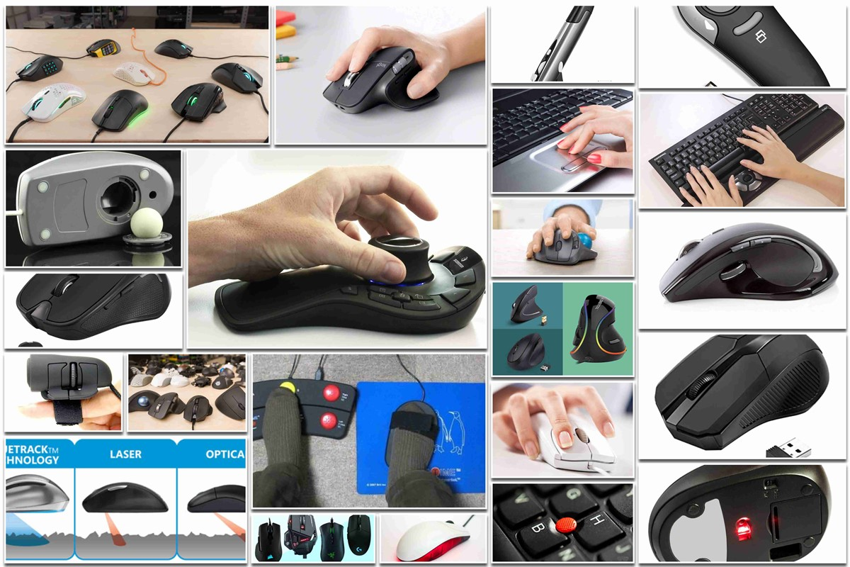 Types of Mouse