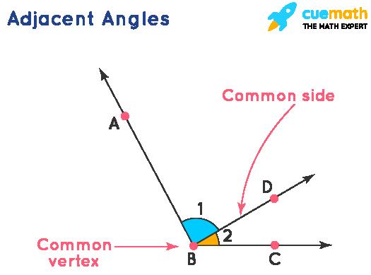 Adjacent Angle