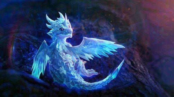Dragonnet Dragon