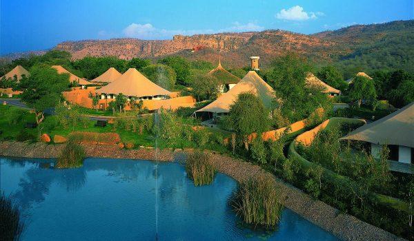 Forest Exploration Resort