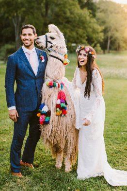 Llama Wedding Theme