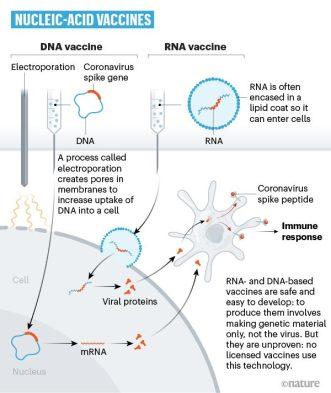 Nucleic Acid COVID Vaccine