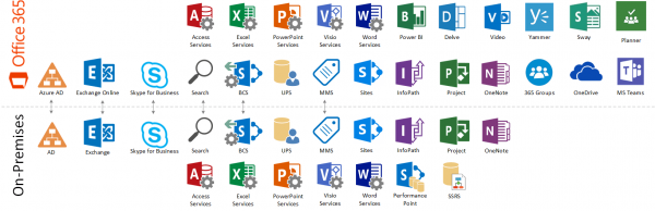Office 365 IT Services