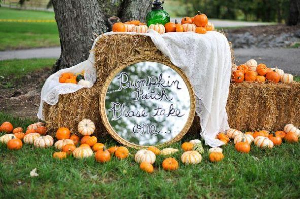 Pumpkin Patch Wedding Theme