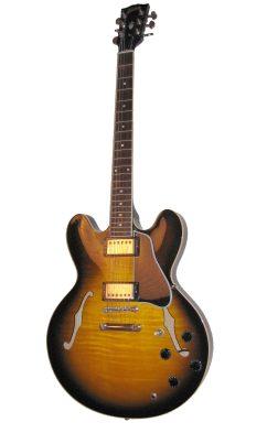 Semi Acoustic Semi Hollow Guitar