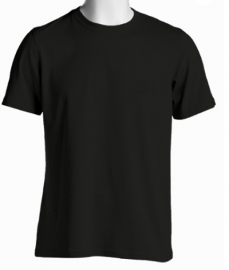 Solid Plain T Shirt