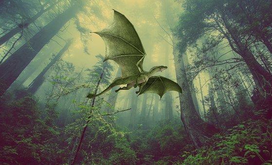 St. Leonards Forest Dragons Dragon
