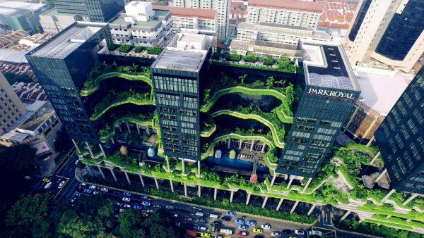 Sustainability Design Degree