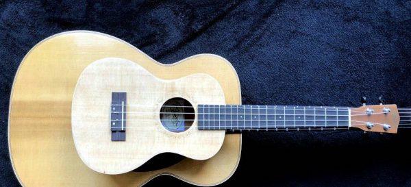 Ukuleles Guitar
